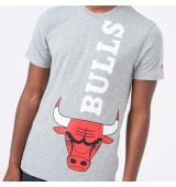NEW ERA NBA TEAM  TEE CHIBUL LGH